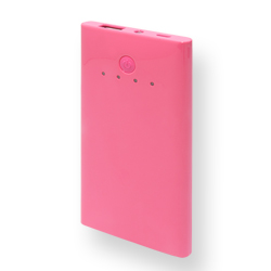 Power Bank 3000